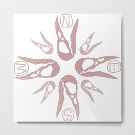 Crow's Compass Metal Print