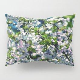 #239 Pillow Sham
