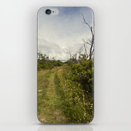 a path in the highlands iPhone Skin
