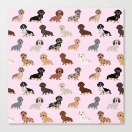 Dachshund dog breed pet pattern doxie coats dapple merle red black and tan Canvas Print