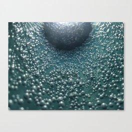 wonderful002 Canvas Print
