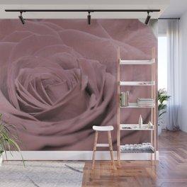 Light Pink Rose Wall Mural