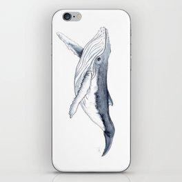Baby humpback whale (Megaptera novaeangliae) iPhone Skin
