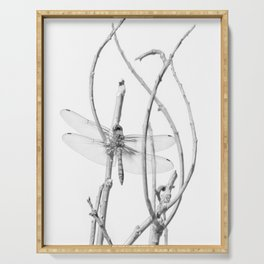 """Dragonfly 11"" by Murray Bolesta Serving Tray"