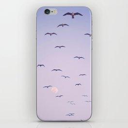 Seagulls & Moon by Murray Bolesta iPhone Skin