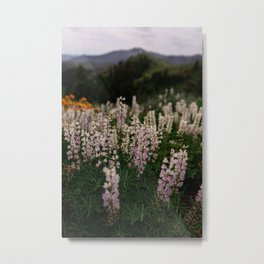 Flower Photography by Patrick Hendry Metal Print