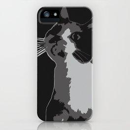 A Curiosity Amongst Cats iPhone Case