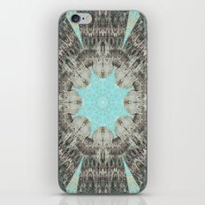 Point The Icicles iPhone & iPod Skin