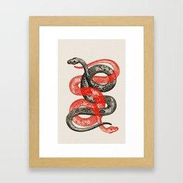 Twin Snakes Framed Art Print