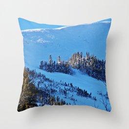 Above the Treeline, Mount Hog's Back Throw Pillow
