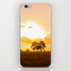 Golden sunset. iPhone & iPod Skin