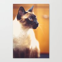 wesley bird Canvas Prints featuring Wesley by Jennifer Renner
