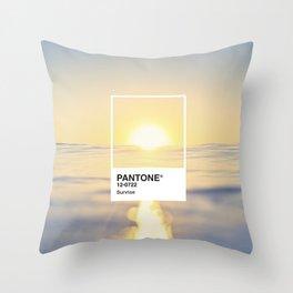 PANTONE SERIES – SUNRISE Throw Pillow