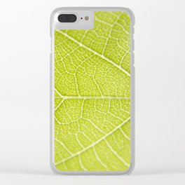 Pathways Clear iPhone Case