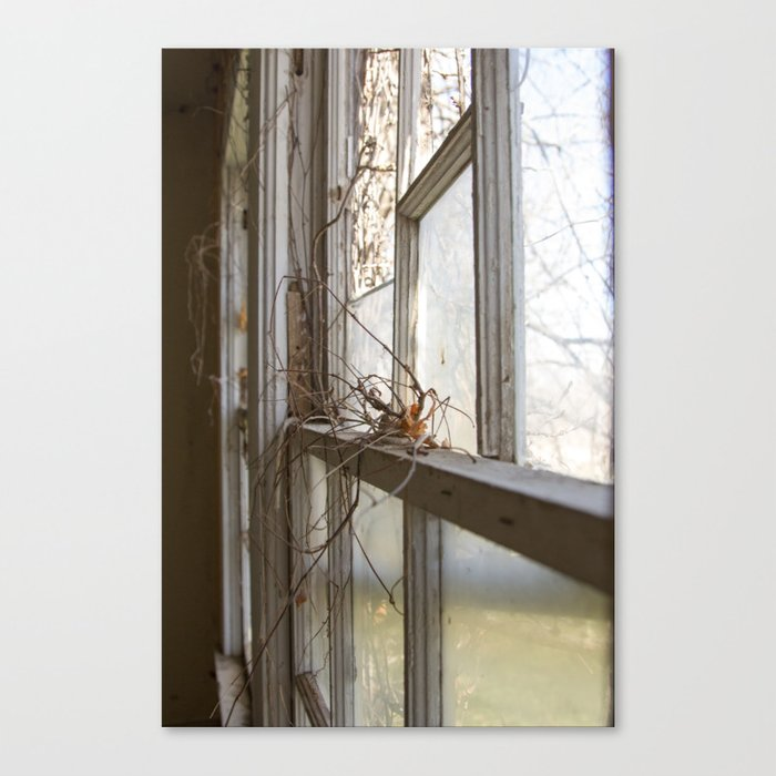 Nature Takes Over Canvas Print