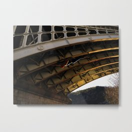 The Spider in Cahors Metal Print