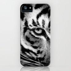 Tiger Eye Slim Case iPhone (5, 5s)