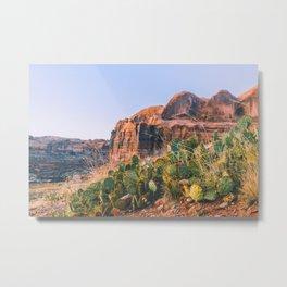 Canyon Life Metal Print