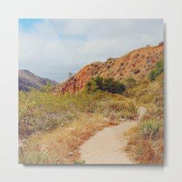 Sandy Trail Metal Print