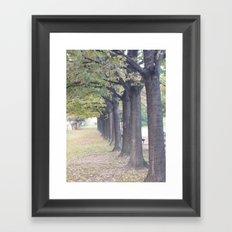 l'allée royale Framed Art Print