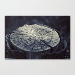 Wooden Stump Canvas Print