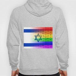 Gay Rainbow Wall Israel Flag Hoody