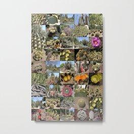 Cactus Montage Metal Print