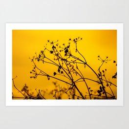 Golden Silhouette Art Print