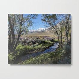 Eastern Sierra Creek Springtime  4-25-20 Metal Print