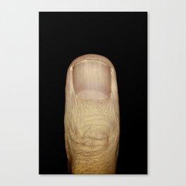 Single Digit Canvas Print