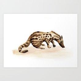 Civet Art Print