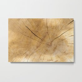 Wood cut background Metal Print
