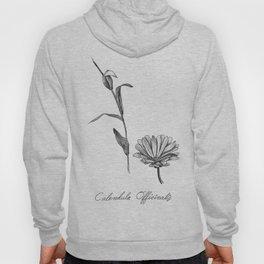 Calendula Botanical Illustration Hoody