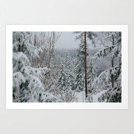 Freezing Oslo Mountains Art Print