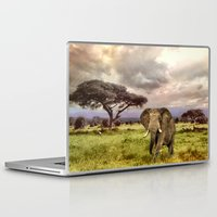 novelty Laptop & iPad Skins featuring Elephant Landscape Collage by Moody Muse