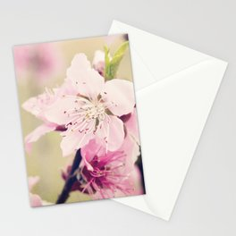 Pink Pear Blossoms 2 Stationery Cards