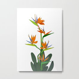 bouquet of flowers Strelitzia Metal Print