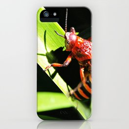 Red Hopper iPhone Case