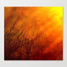 The burning world Canvas Print