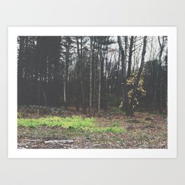 Autumn 15 Art Print