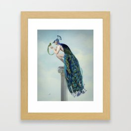 Secrets And Feathers Framed Art Print