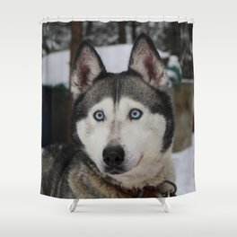 Dog by Ellie Lord Shower Curtain