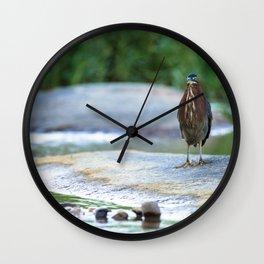 Little Green Heron Wall Clock
