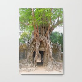 Passage under tree  Metal Print