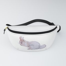 come squirrel a snack away with me! Fanny Pack