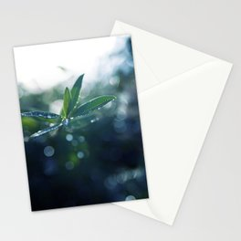 Shining in the Dark. Stationery Cards