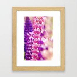 Pink & Lavender FlowerS Framed Art Print