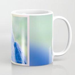 Beauty is an Enchanted Soul Coffee Mug