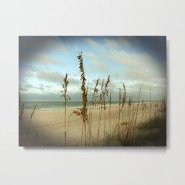 Morning sea oats Metal Print