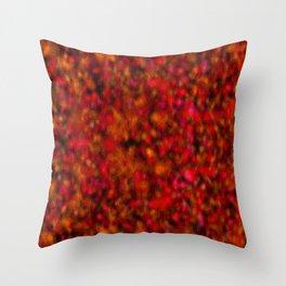 crazed colors 2 Throw Pillow
